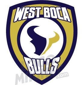 West Boca Comm Hs Bulls Texans Jpg Custom Car Magnet